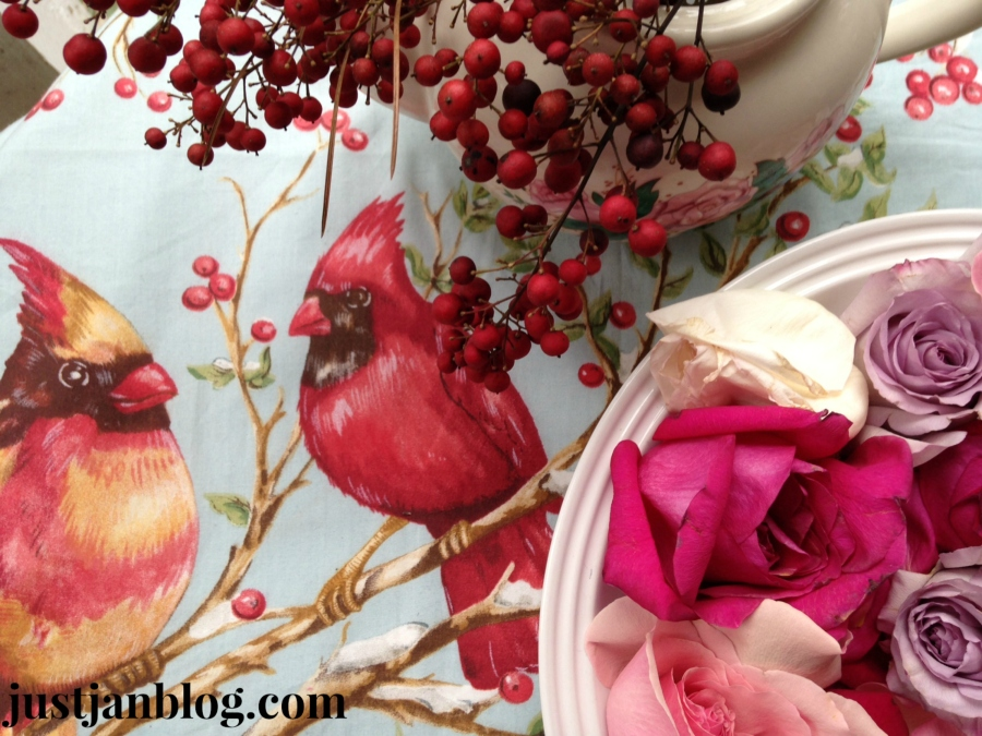 Birds, berries and buds!