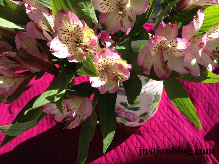 flowerspinksweater