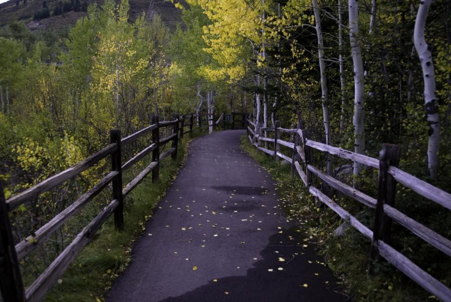 Aspen Walkway