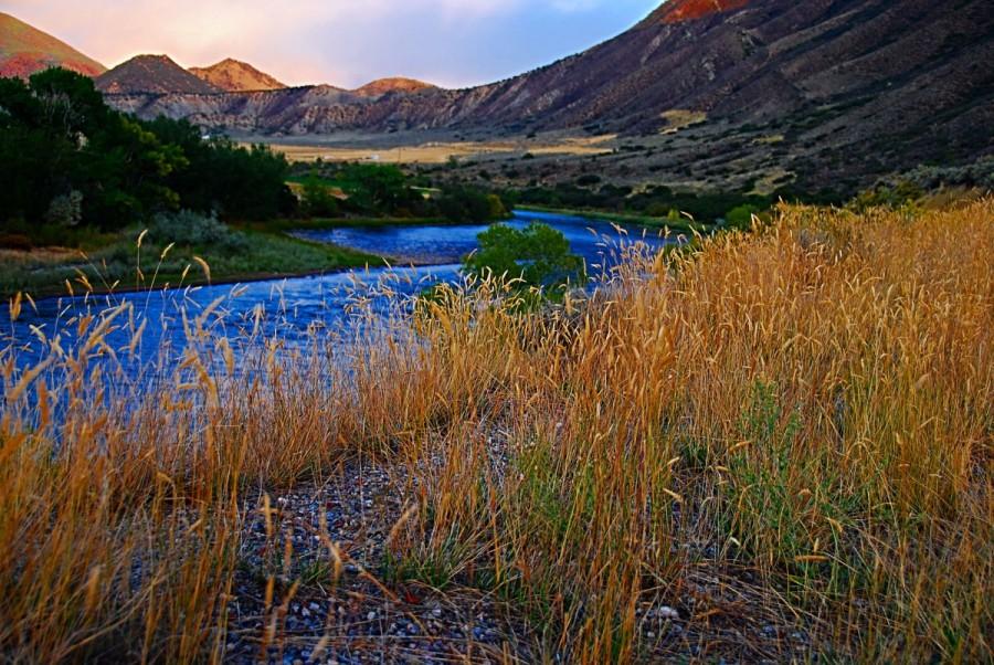 Colorado-Stream