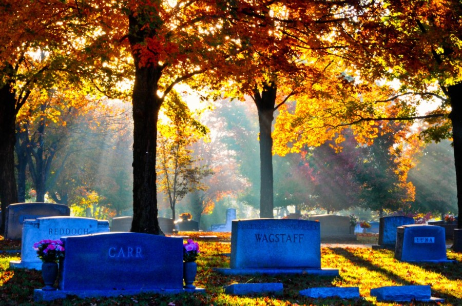 Sunlight on Maple Leaf Cemetery