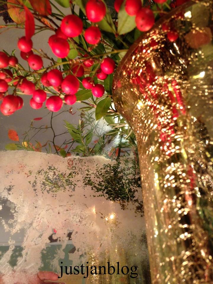 Christmasberries