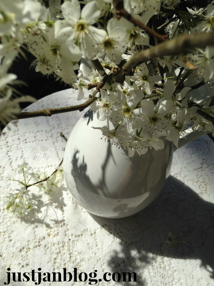 white-bradford-pear-flowers5