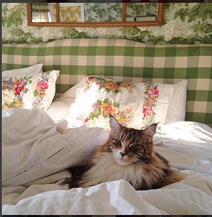 Jessican Goranson Lewand master bedroom