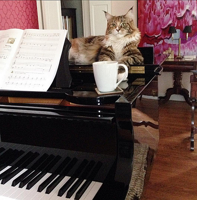 Jessika Goranson Lewand piano