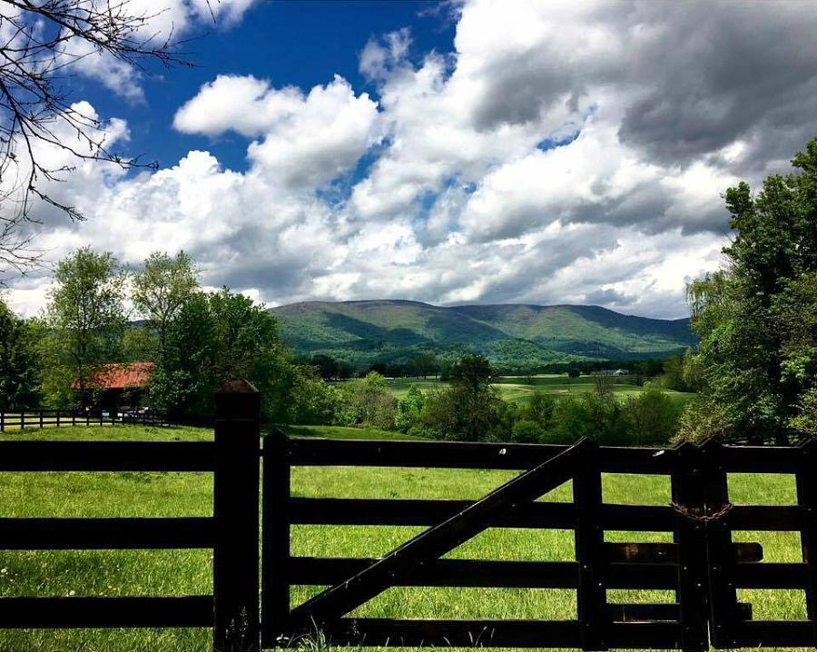 Karen Keysar fence with view
